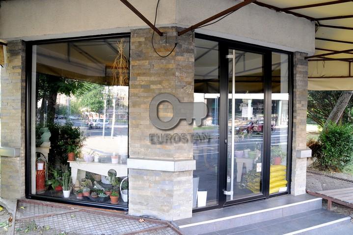 Poslovni prostor KARAĐORĐEV TRG 105000 EUR