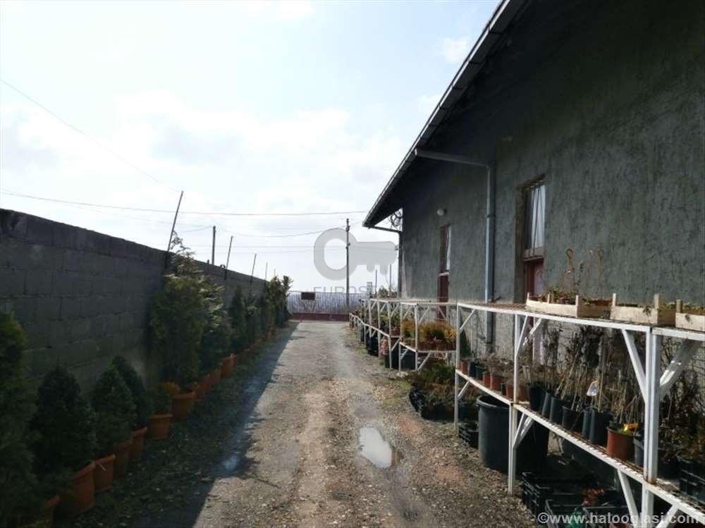 Poslovni prostor LIPOVICA 600 EUR